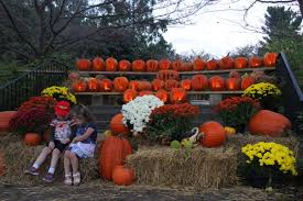 Ohio State Pumpkin Designs by Big Crowds Expected All Weekend To Attend Kingwood U0027s Pumpkin Glow