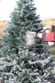 Flocking Machine For Christmas Trees by The Craft Patch 2016 Christmas Home Tour Tons Of Ideas You Can