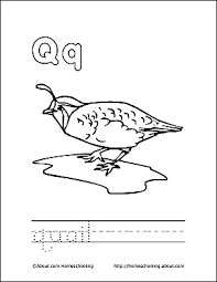 Print The Pdf Quail Coloring Page And Color Picture Use Your Back Button To Return This Choose Next Printable Sheet