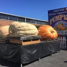 Half Moon Bay Pumpkin Patches 2015 by Half Moon Bay Pumpkin Festival 314 Photos U0026 199 Reviews