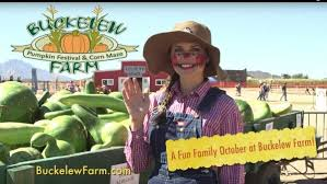 Pumpkin Patch Power Rd Mesa Az by The 10 Best Halloween Corn Mazes In Arizona