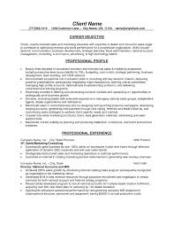 Resume Examples Sales For Career Objective With Professional Profile And