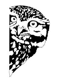 Owl Pumpkin Template by Best 25 Owl Stencil Ideas On Pinterest Owl Pumpkin Stencil Owl