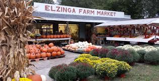 Best Pumpkin Patches Indianapolis by Elzinga Farm Market Dyer Indiana U0027s Favorite Farm Stand