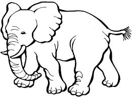 Best Elephant Coloring Pages 5 For Kids