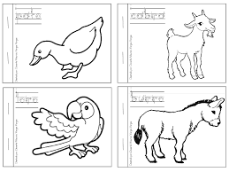 Dibujos Para Colorear Animales Salvajes Marinos Pequeño Delfín