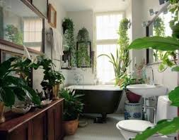 that tub plants everywhere my tolle badezimmer