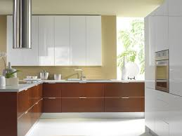Thermofoil Kitchen Cabinets Online by How Much Does Replacing Kitchen Cabinet Doors Cost Monsterlune Rta