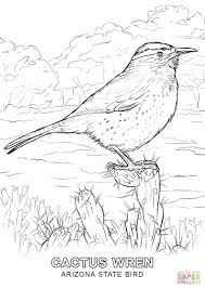 Arizona Coloring Page 20 Pages 19 State Bird
