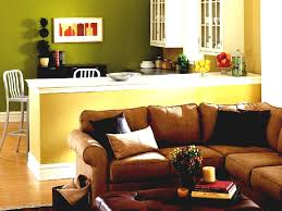 Living Room Nice Apartment Decorating Ideas Small
