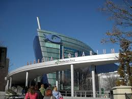 Georgia Aquarium, Atlanta, GA « Travel Directory Trucking 411