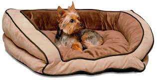 Snoozer Overstuffed Sofa Pet Bed by Looking For A Dog Sofa Bed We Pick 5 Of The Best