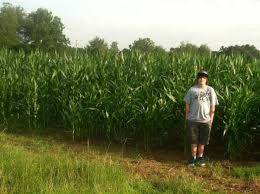 Pumpkin Patches In Milton Wv by Find Corn Mazes In Milton Florida Sonshine Family Farms In