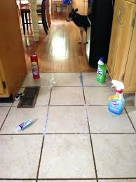 amazing kitchen floor tile cleaner best regarding cleaning
