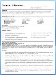 Samples Functional Resume Format It Professional