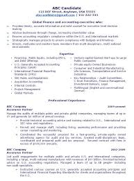 Public Accounting Partner 1 Flame CFO Resume Sample