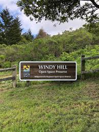 Windyhill Hashtag On Twitter The Cypress Obsver Online News Source For Country Of Cyprus Windy Day Media Hill Woodturning Pages Directory Welcome To The Fastlane Official Blog Of Us Secretary Review 2013 Volkswagen Cc Truth About Cars Unique Custom Build Individual Green Original Big Rig Semi Truck Truck So Many Miles Tnsiams Most Teresting Flickr Photos Picssr Stanleys Sales Home Facebook 12 From I65 Ky Center 7309 Volume 4 Teamsters Local 355 Trucks And Tanami Motopangaea
