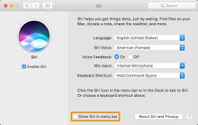 How To Remove The Siri Icon Shortcut From Your Mac's Menu Bar & Dock How To Change Macbook Screen Resolution Manually Ense Menubar Stats An Advanced Mac System Monitor With Use Dictation Commands Tell Your What Do Apple Support Fix Icon Toolbar Missing On Finder Menubar Desktop Macos To Remove Imessage On Pro Ask Find The Command Symbol In Os X 15 Of Best Menu Bar Extras For Macos Sierra The Security Tip Autohide Menu Bar El Capitan Icons From Mac Youtube Try Out New Touch Any Tip Rearrange And Remove Stock Icons What Apps Are Using Draing Battery A