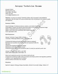 Federal Resume Example 650*828 - Sample Federal Resume ... Resume Sample Vice President Of Operations Career Rumes Federal Example Usajobs Usa Jobs Resume Job Samples Difference Between Contractor It Specialist And Government Examples Template Military Samples Writers Format Word Fresh Best For Mplate Veteran Pdf