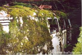 Moss Covered Volkswagen Panel Van Camper Conversion Hidden In VW Junk Yard