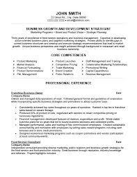 Small Business Owner Job Description For Resume Manager Sample Software Developer