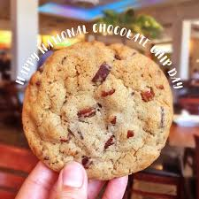 Today Is National Chocolate Chip Cookie Day