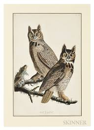 Audubon John James 1785 1851 Great Horned Owl Plate LXI From The Birds Of America London Havell 1827 1838 Sold For 12300