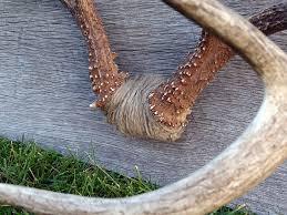 twine detail on buck mount cabin fever pinterest twine