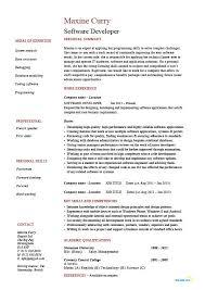 Software Resume Developer Exxample Sample