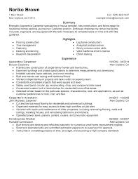 Sample Resume For Construction Laborer Of Worker Captivating