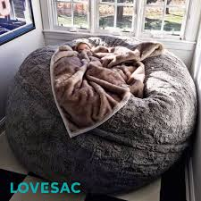 Huge Fur Bean Bag And Cosy Blanket