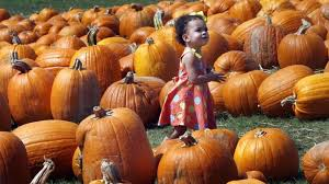 Pumpkin Patch Cleveland Mississippi by Halloween Events Are Spooky And Sweet In South Mississippi The