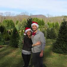 Griswold Christmas Tree Farm by Holly Hill Christmas Tree Farm Home Facebook