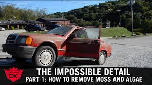 The Impossible Detail Part 1: How To Remove Moss And Algae - YouTube Euro Truck Simulator 2 120 Beta Shows Ridiculous Attention To Auto Detailing West Coast Polishing Autosmile Vehicle Spray In Bed Liners And Micro Complete Professional Car Step By Process Home Detail World Automotive Restyling Centers Fargo Valley Recditioning Nd Perth Emcd Exclusive Mobile Deluxe How Super Clean Your Engine Bay Youtube Gallery Speedy Sparkle Wash To A Semitruck Cab Elite And Metal Facebook