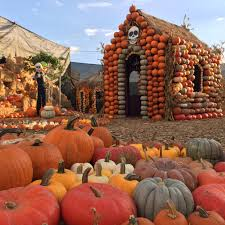 Pumpkin Patch Lafayette La 2017 by Things To Do In New York During This Weekend With The Kids Oct