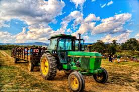 Chesterfield Berry Farm Pumpkin Patch 2015 don u0027t miss these 14 pumpkin patches in virginia this fall
