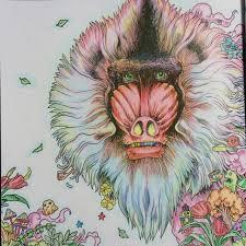 Coloring Coloringbook Colordpencil Animorphia Kerbyrosanes Hamadryas Stressreduction Left
