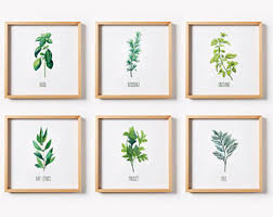 Kitchen Wall Art Decor Herb Print Set Printable Prints
