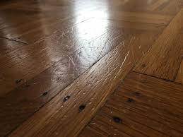 wood or laminate flooring for dogs meze blog