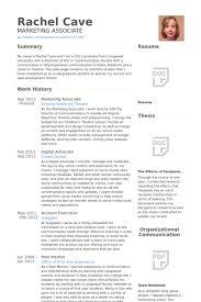 Digital Advocate Resume Example