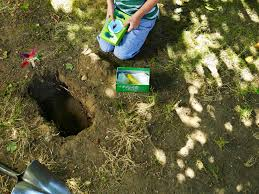 How To Bury A Pet In The Yard | Animals - Mom.me Qa More Help For Dogfriendly Gardens Sunset Beetles Backyard And Beyond Page 6 Best 25 Dog Backyard Ideas On Pinterest Potty Bathroom What To Do With Your Pets Remains After Death I Used Concrete Blocks As Planters To Keep My Dog From Digging 26 Burrowing Animals Pictures You Need See Right Now Man Admits Shooting Burying In Westside Jacksonville Is Your A Bone Or Other Objects Gotta Find That Peanut Bury It My Wildlife Squirrels Burying Nuts Documentary Youtube Mountain Lion Deaths Creasing Near Santa Monica Mountains Abc7com Squirrel Nut Frenzy