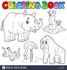 Coloring Book Tropical Animals Picture Imágenes De Stock Coloring