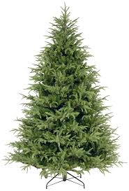 Barcana Christmas Tree For Sale by 7 Best Noble Fir Christmas Tree Images On Pinterest Firs