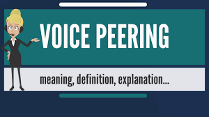 What Is VOICE PEERING? What Does VOICE PEERING Mean? VOICE PEERING ... Media Routes Cloud Communications Teloip Brings Sdwan To Companies Of All Sizes Arisigal7 M Twilio Inc All Rights Reserved Ari Sigal Securing Screenshot2709at110813png By 2015 Pstn Voice Might Be Only 10 Total Lines Voip Innovations Custom Communication Solutions Patent Us8325905 Routing Calls In A Network Google Patents Ep2033431b1 Methods Systems And Computer Program Network Security Handbook For Service Providers Assurance Teraquant