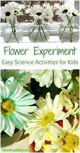 Montessori Science Activities For Preschoolers Hands On Kids Astronomy