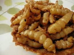 comment cuisiner des crosnes tartelettes aux crosnes et à la farine de châtaigne ecolopop