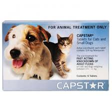 heartgard for cats capstar small and cat tablets pet meds