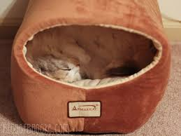 Armarkat Cat Bed by 335 Best
