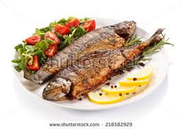 fish cuisine fish dish fried fish fillet vegetables stock photo 100