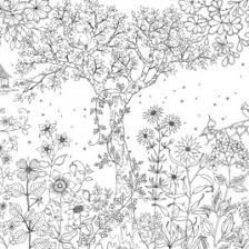 Coloring Pages For Adults Secret Garden Archives Mente Beta Most